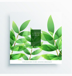 green leaves nature background card vector image