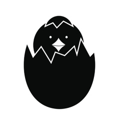 Newborn chicken hatched from the egg icon vector