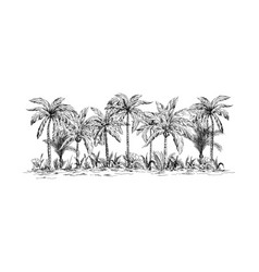Panoramic view of the forest from palm trees vector