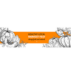 Pumpkin banner hand drawn vintage harvest vector