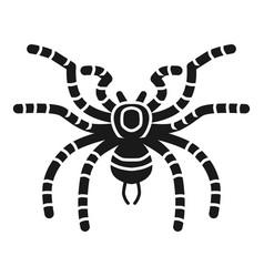 Tarantula spider icon simple style vector