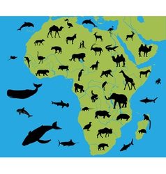 Animals on map africa vector