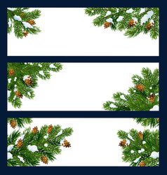 christmas tree and pine branches with copy space vector image