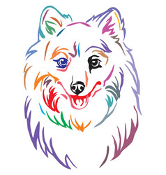 Colorful decorative portrait of dog japanese vector