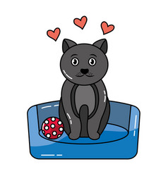 cute pet cat sitting in bed with ball vector image
