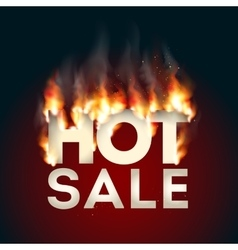 Design with Fire Hot Sale vector image