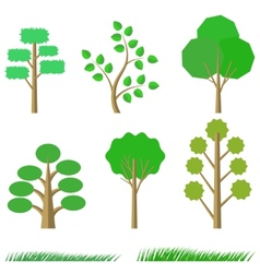 Green Trees vector image