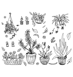 Pot plants set hand-drawn design elements vector