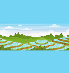 rice field landscape cartoon vector image