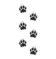 tiger paw print silhouette vector image