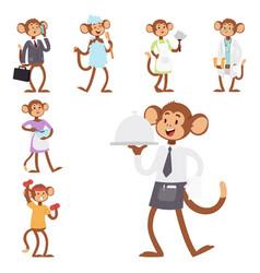 monkeys rare animal cartoon macaque like vector image