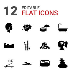 12 spa icons vector