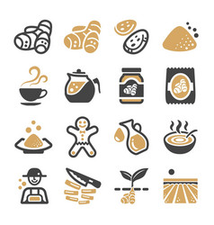 ginger icon vector image