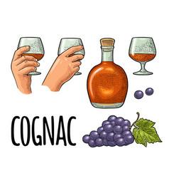 glass barrel and bottle cognac vintage vector image