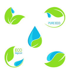 Green leaves and water droplets icons vector