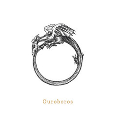 Ouroboros in engraving style vector