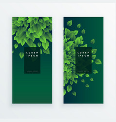 set of two nature banners background vector image