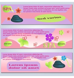 Spa Flyer Template vector image