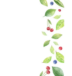 watercolor design green leaves cherry vector image