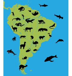 animals on map south america vector image