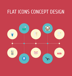 Flat icons treatment radiology stomatology and vector