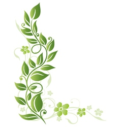 Leaves floral element vector