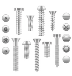 Realistic Screw Icon Set Different Shapes vector