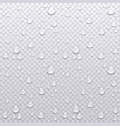 Realistic water drops transparent background vector
