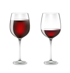 transparency wine glass vector image