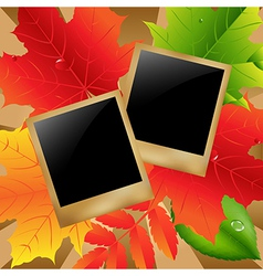 Retro Photo With Leaves vector image vector image