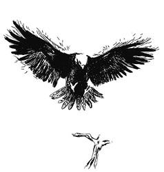 Hand sketch eagle vector image