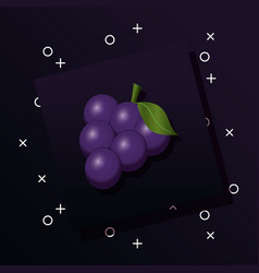 bunch of grapes design vector image