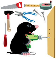 Cartoon mole builder vector