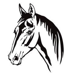 Decorative horse 11 vector