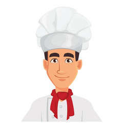 face expression of young professional chef man in vector image