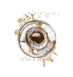 Hand drawn coffee cup with watercolor spots vector