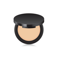 Makeup nude powder color in black case opened box vector