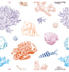 seamless hand drawn seashells fish crabs corals vector image