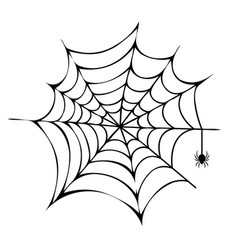 Spider building his net icon vector