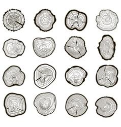 Tree rings set saw cut trunk vector