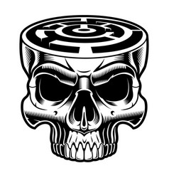 A skull with labyrinth in the head vector
