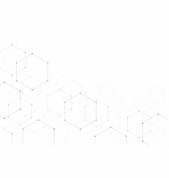 abstract hexagonal on white background vector image