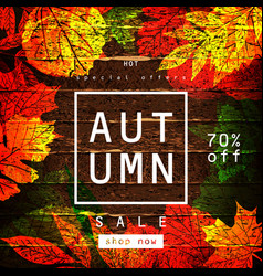 autumn sale lettering label vector image