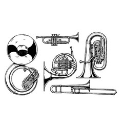 Brass musical instrument vector