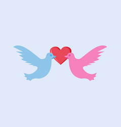 dove bird couple in love graphic vector image