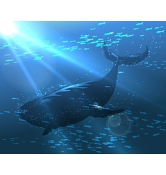 Floating Whale vector image