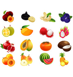 Fruits set1 vector