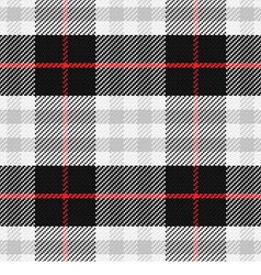 seamless pattern Scottish tartan 2 vector image