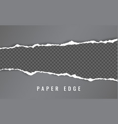 Torn paper edge torn paper stripes ripped squared vector