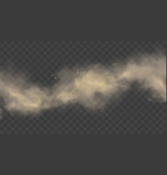 white or gray smoke realistic mist or dust motion vector image